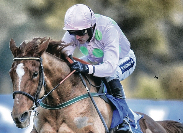 Ruby Walsh, winning on Annie Power, believes the horse can be success at Cheltenham