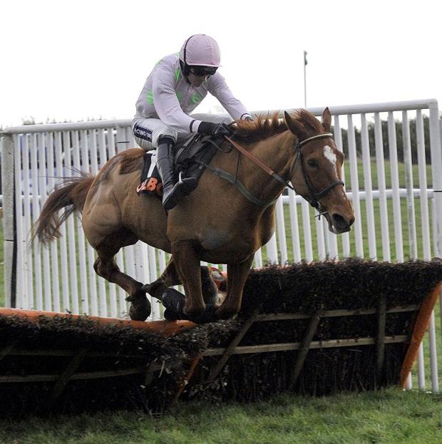Annie Power is unbeaten in 10 races