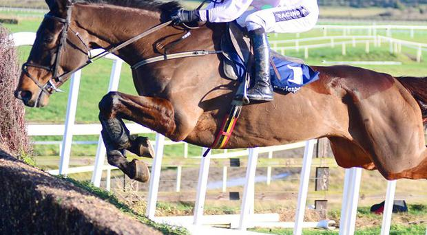 A fine leap from Arvika Ligeonniere on his way to winning