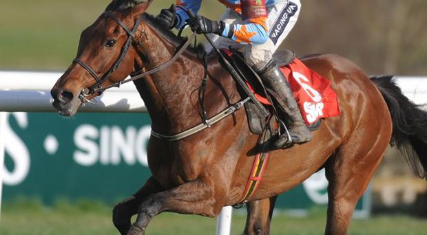 Willie Mullins is undecided on the target for Un De Sceaux