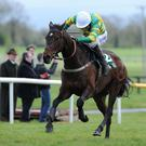 Alderwood is set to miss the Cheltenham Festival