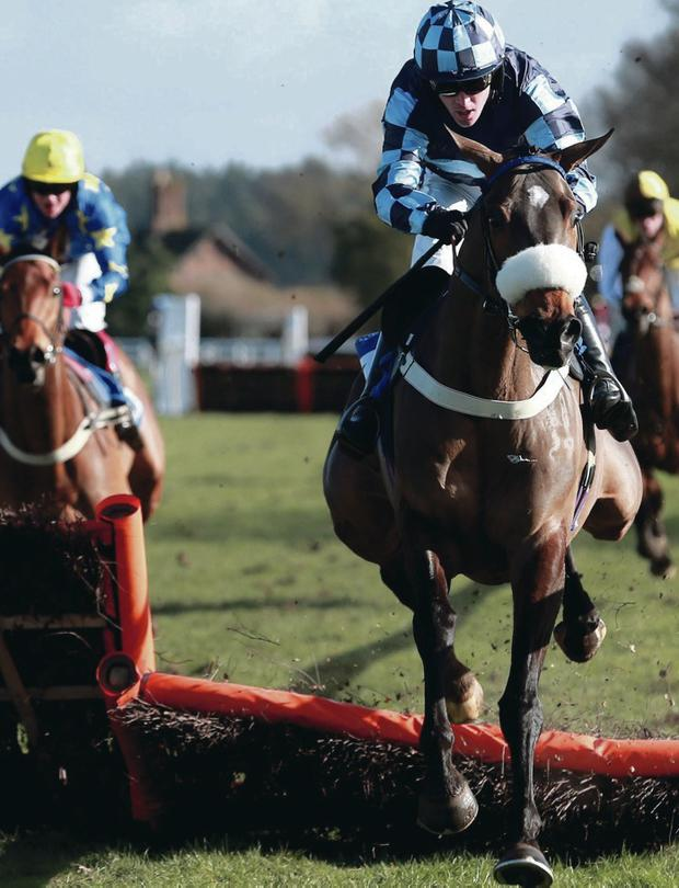 Kings Bandit, ridden by Jason Maguire, on way to victory in corbettsports.com Novices Hurdle at Ludlow yesterday