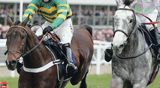 Tony McCoy and My Tent Or Yours (left) in action at last year's Cheltenham Festival