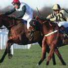 Fredo (right) fights back to beat Tafika in Queen Elizabeth The Queen Mother Memorial Chase at Sandown yesterday