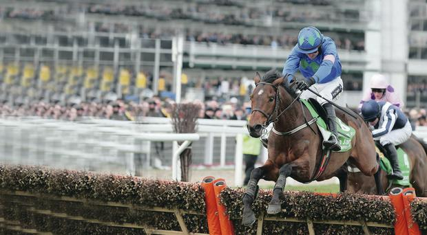 Hitting the heights: Hurricane Fly is a flagbearer for Willie Mullins' stable