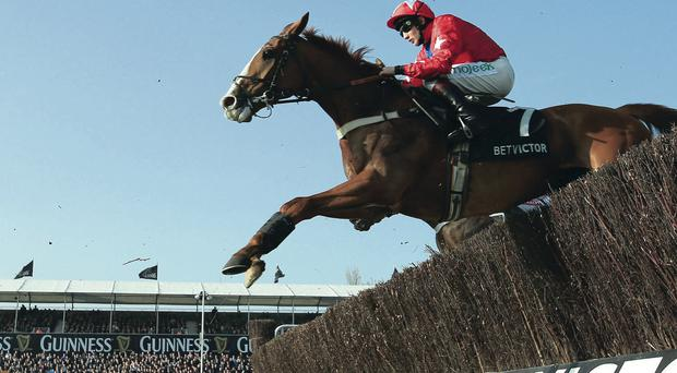 Powering ahead: Sire De Grugy leaps towards victory under Jamie Moore in the Queen Mother Champion Chase yesterday