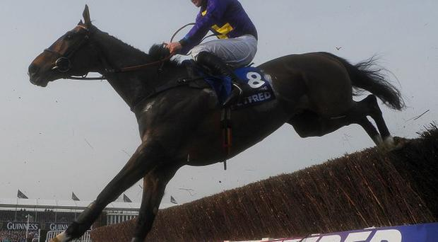 Lord Windermere, pictured, held off On His Own to win the Gold Cup