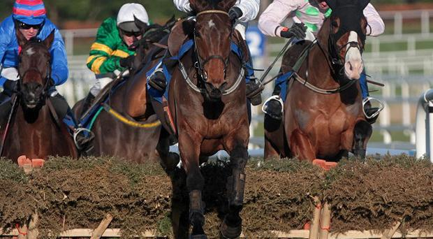 Western Boy is set to return to a right-handed track at Punchestown