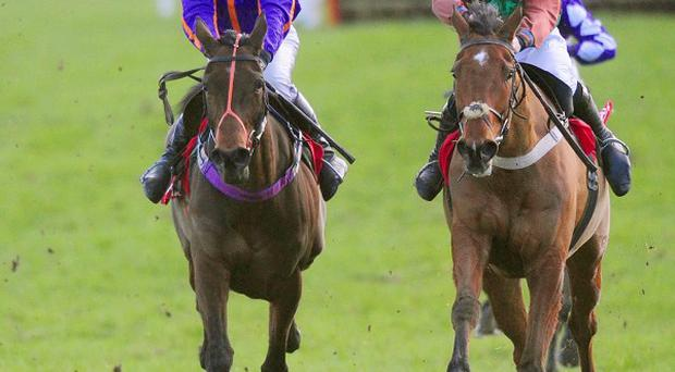 Bonzo Bing, right, and Davy Russell took the honours in the 29 Gold Packages For Racing Rated Novice Hurdle