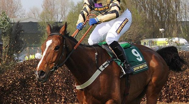 Prince De Beauchene is a fancy for the Grand National