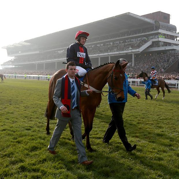 Bobs Worth could run at Punchestown at the end of the month