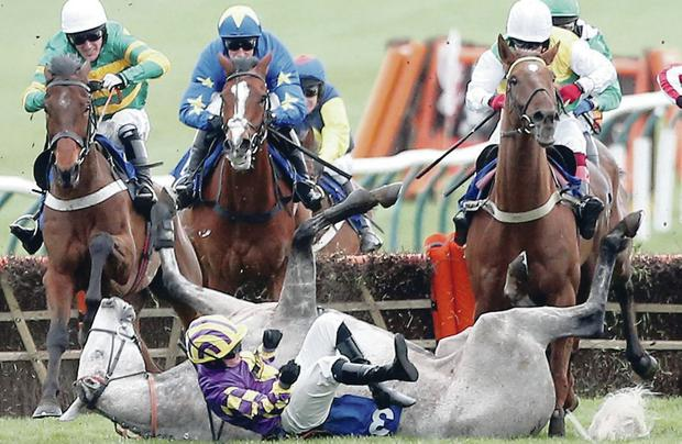 Hard game: Daragh Bourke takes a tumble from Howizee in the last race on the opening day of the Scottish Grand National meeting at Ayr yesterday, with Ulster great Tony McCoy (left), on Forward Flight, just one of the jockeys faced with an unexpected obstacle