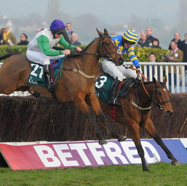 Tammys Hill was a winner at the Cheltenham Festival