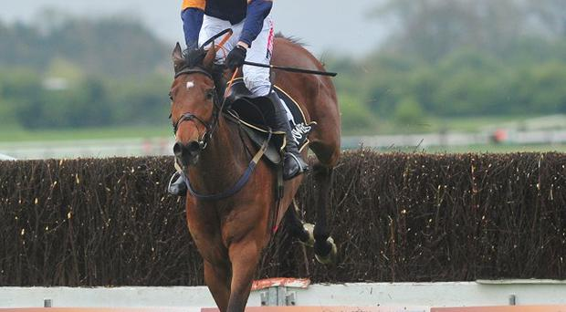 Rebel Fitz won the Powers Gold Cup by 15 lengths