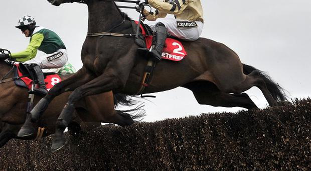 Boston Bob and Ruby Walsh came home to win the Bibby Financial Services Ireland Punchestown Gold Cup