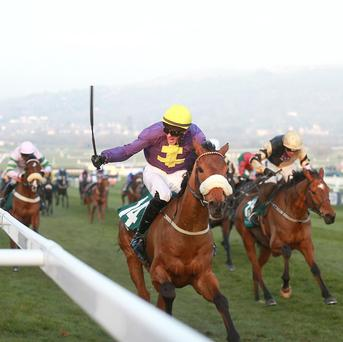 Shaneshill, right, gained revenge on Silver Concorde