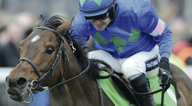 Hurricane Fly and Ruby Walsh are tipped to win today's Champion Hurdle at the Punchestown Festival