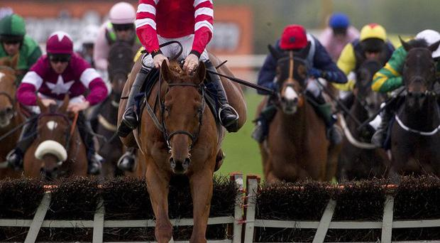 Abbyssial wins The AES Champion Four Year Old Hurdle at Punchestown