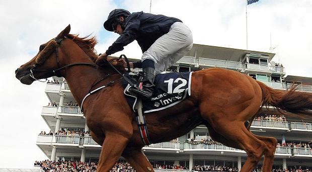 Ruler of the World is likely heading for the Coronation Cup