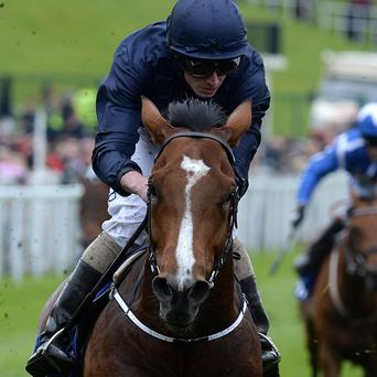 Orchestra wins the MBNA Chester Vase at Chester Racecourse