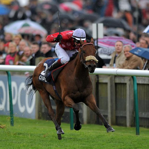 Maarek is top weight for the Duke of York Clipper Logistics Stakes