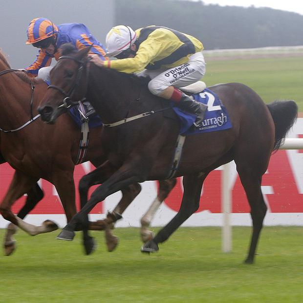 Ballybacka Queen, right, finished third in the Derrinstown Stud 1,000 Guineas Trial on her seasonal return
