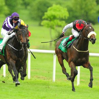 Sailors Swan, right, won on his first start of the season at Navan