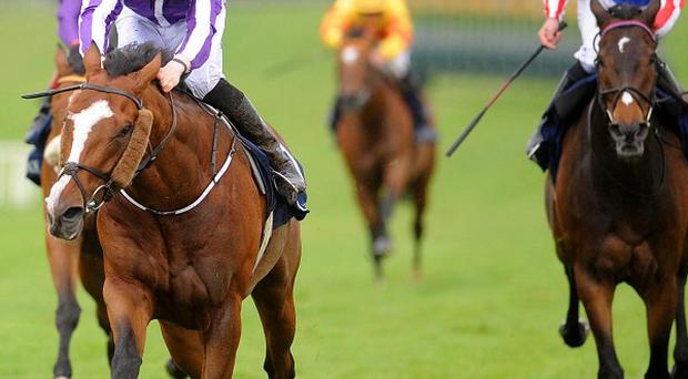 Leading Light won the Coolmore Vintage Crop Stakes by three lengths