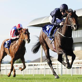 Geoffrey Chaucer on his way to winning at the Curragh