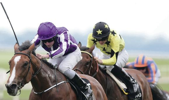 Out in front: Marvellous is favourite for the Oaks today at Epsom