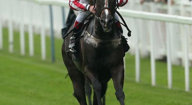 Sole Power winning the 2013 King's Stand