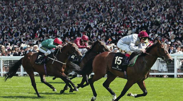 Top tip: Frankie Dettori rides The Wow Signal to victory in the Coventry Stakes