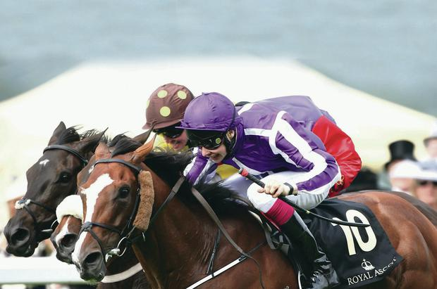 Gold rush: Joseph O'Brien powers Leading Light to victory in the Ascot Gold Cup yesterday