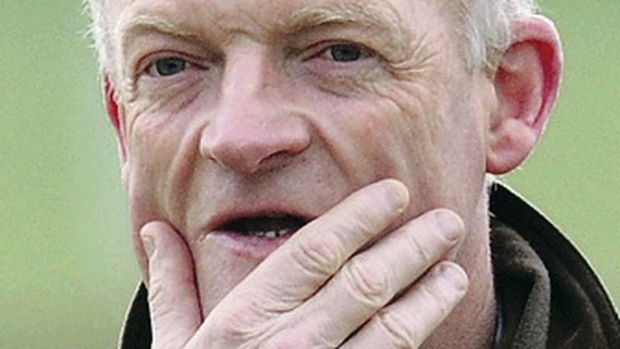 Treble chance: Willie Mullins will have three runners at Newcastle