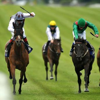 Ambivalent winning last year's Pretty Polly