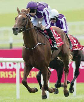 Hollow victory: Joseph O'Brien rides Australia to a straightforward 1-8 success in the Irish Derby