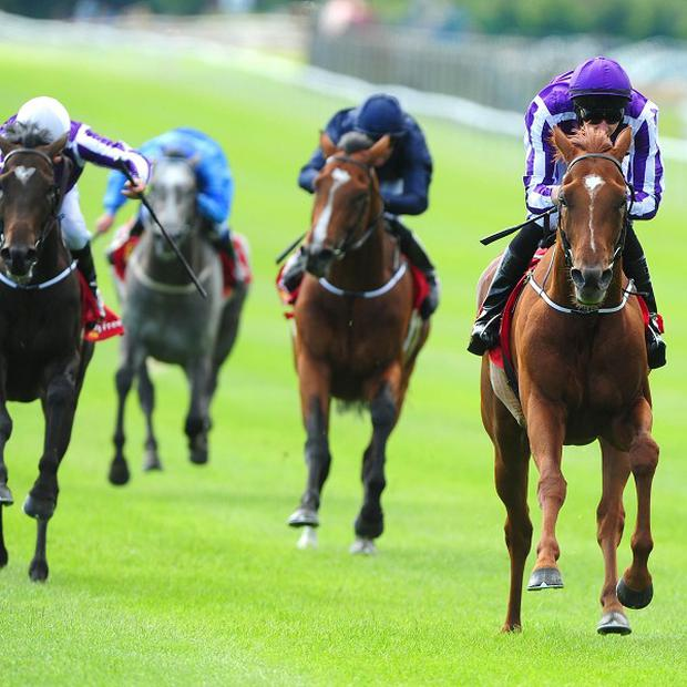 Australia (right) beat just four rivals in the Irish Derby