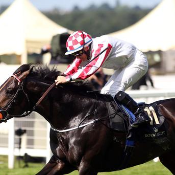 Slade Power