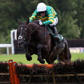 On The Record and Tony McCoy on their way to a record-equalling success