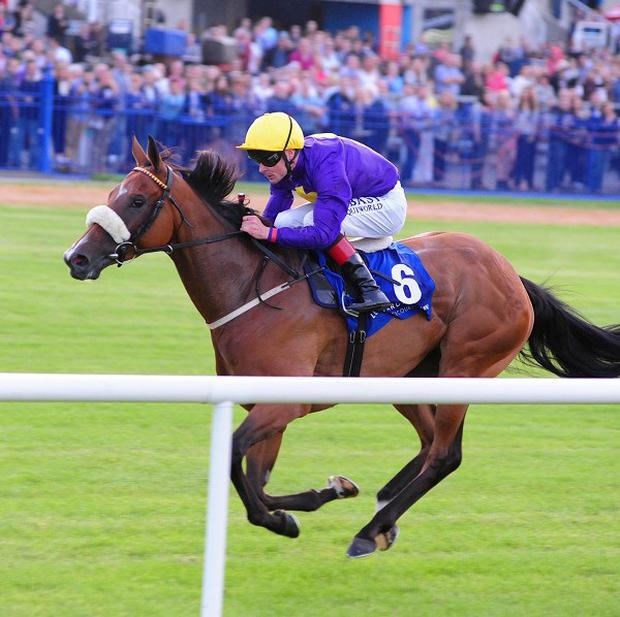 Pale Mimosa wins the Challenge Stakes at Leopardstown