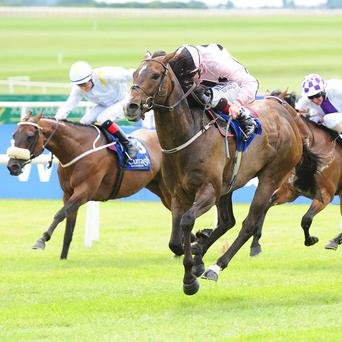 Ansgar makes all to win the Minstrel Stakes