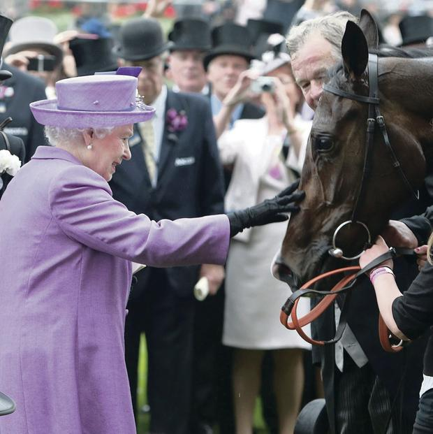 Royal approval: The Queen with her horse Estimate after Gold Cup win at Royal Ascot in June 2013