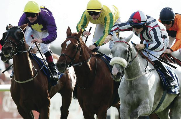 Close call: Vastonea (right), ridden by Gary Halpin, wins Topaz Mile at Galway Festival last night
