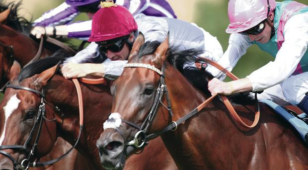 King crowned: Kingman (right), with James Doyle on board, gets up to beat Toronado in the Sussex Stakes at Glorious Goodwood