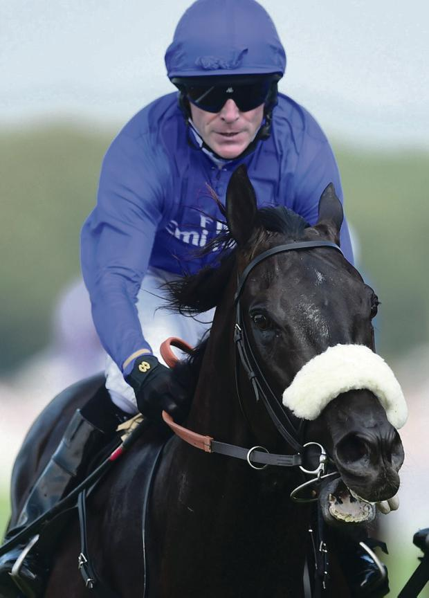 Up for the Cup: Cavalryman, with Kieren Fallon on board, wins the Goodwood Cup yesterday
