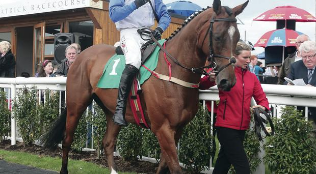 Big chance: Big Kern, with rider Robbie Power in the saddle, on his last Downpatrick outing