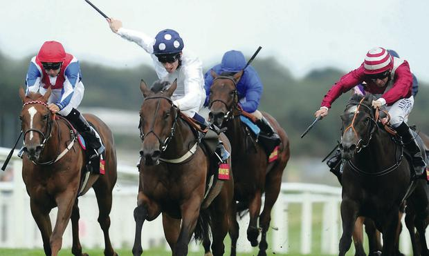 Out in front: Bronze Maquette, with Shane Kelly on board, wins the Bathwick Tyres St Hugh's Stakes at Newbury yesterday