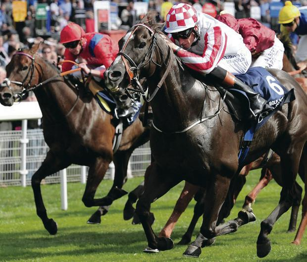Rich pickings: Richard Hughes guides Sole Power to victory in the Nunthorpe Stakes at York yesterday