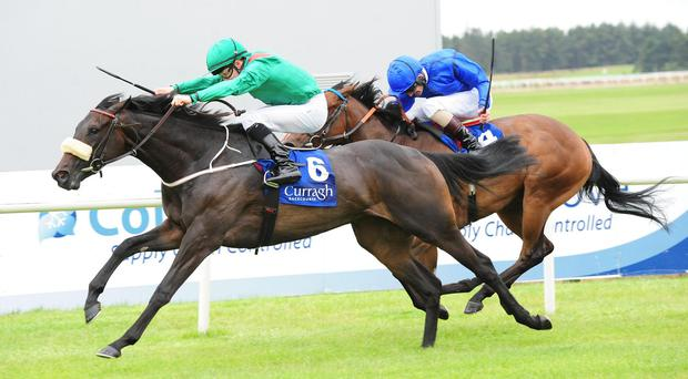 Raydara surges to the front in the Debutante