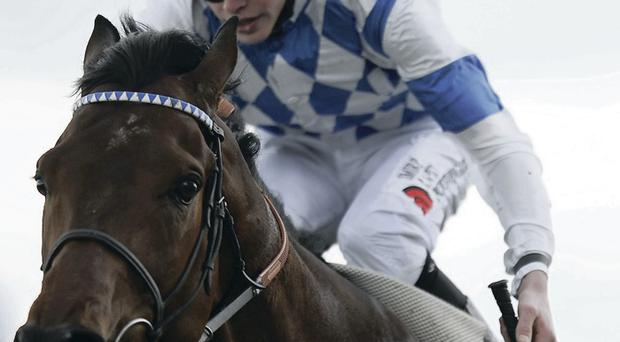 Champion challenger: Al Kazeem is set to run in the Champion Stakes at Leopardstown on Saturday week